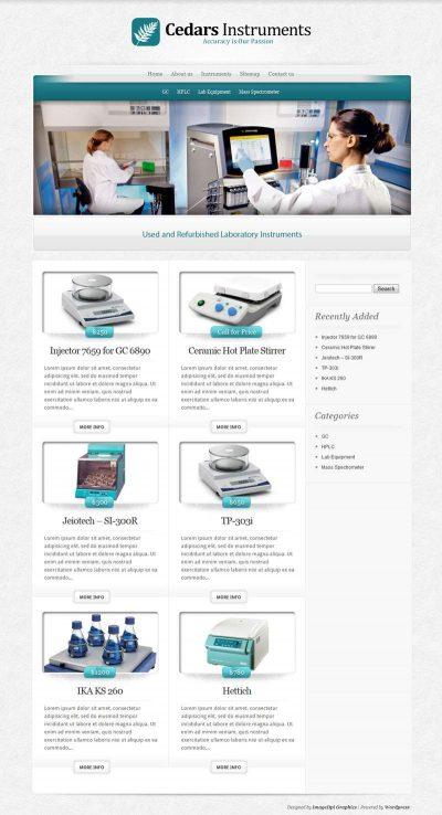 Website Design Company in USA